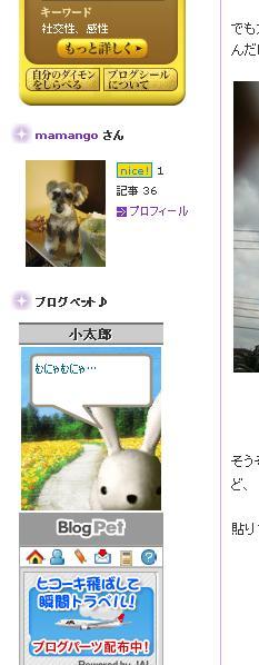 ブログペット2jpg.JPG