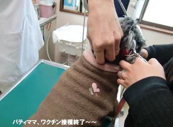 わんこワクチン9.jpg