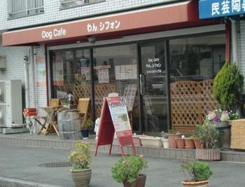 ドッグカフェ.jpg