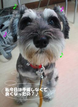 マネ2.jpg