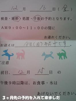 マネ3.jpg
