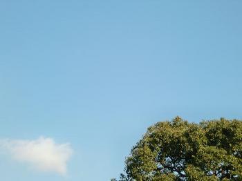 空10.jpg