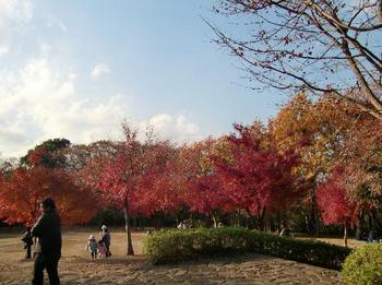 舞岡公園32.jpg
