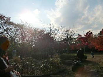 舞岡公園33.jpg