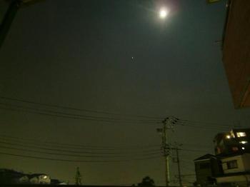 満月4.jpg